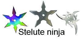 Stelute ninja